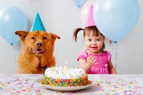 Hosting A BirthdayCelebration